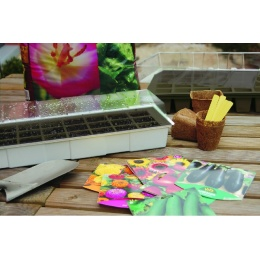 мини парник GROWING KIT